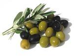 olives Avatar